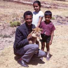 Playing with a lion cub in Gondar, the former capital of Ethiopia (where she lived with her mother, father (pictured, left) and brother Teji (right) from 1969-71).