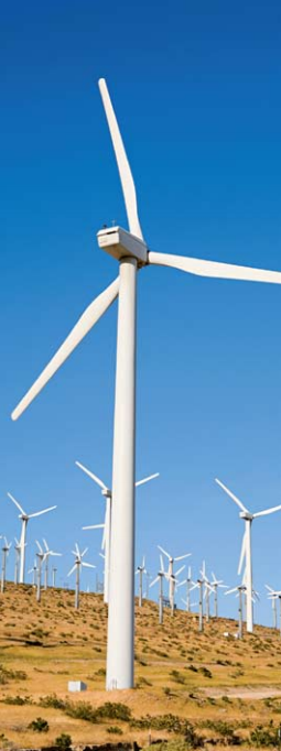 As the number of wind farms continues to grow, some predict wind power may overtake nuclear energy as a global electricity source within the next 10 years.