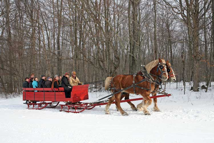 Cassandra Cleghorn's class on War and Peace takes a sleigh ride