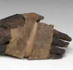 Mystery of the Mummified Hand