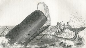 Etchings of a Whaling Cruise, with Notes of a Sojourn on the Island of Zanzibar: To Which is Appended a Brief History of the Whale Fishery, Its Past and Present Condition, by J. Ross Browne (Harper & Brothers, 1846)