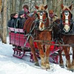A photo of a horse drawn carriage going through the snow.