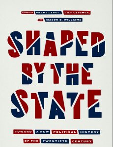 Shaped by the State book cover