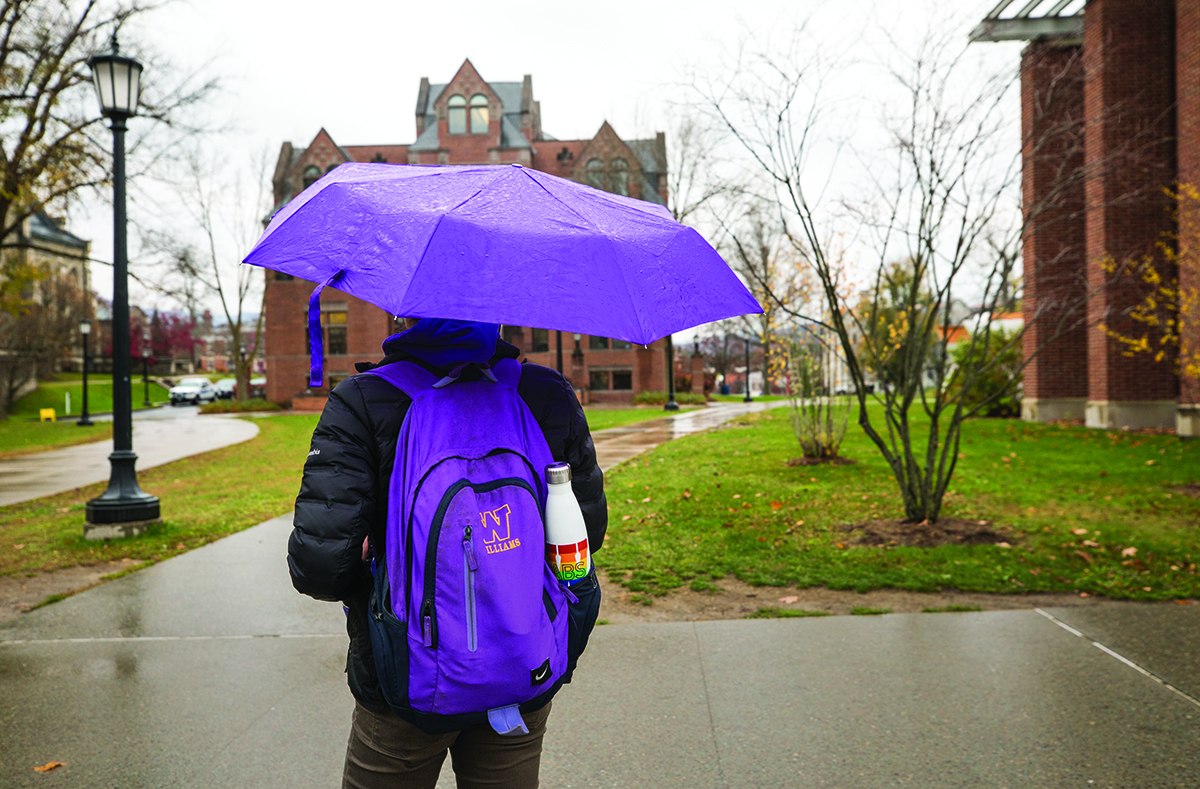 Photo of person walking through rain with umbrella, seen from behind.